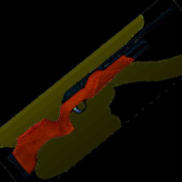 Спортивная винтовка пневматическая «Вальтер»